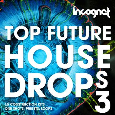 Top Future House Drops Vol.3